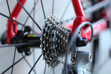 bike chain around gear