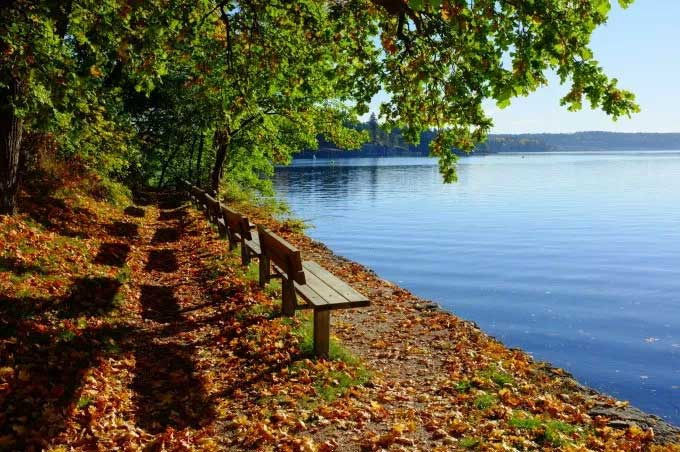 benches by lake